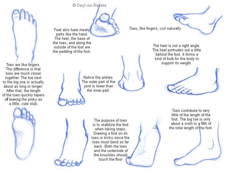 come disegnare piedi