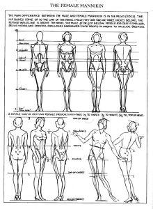 proporzioni femminili
