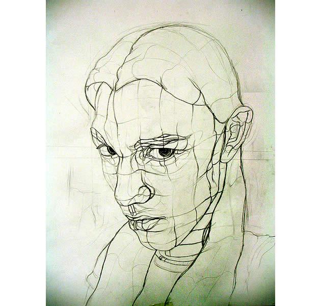 line-drawings-cross-contour