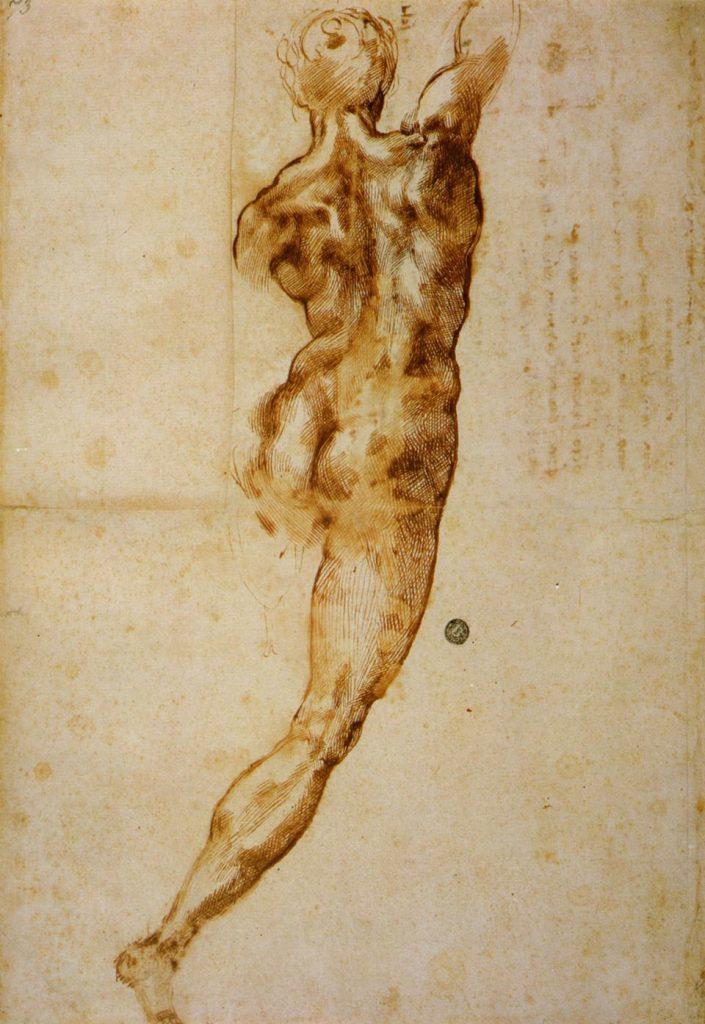 Disegno Michelangelo